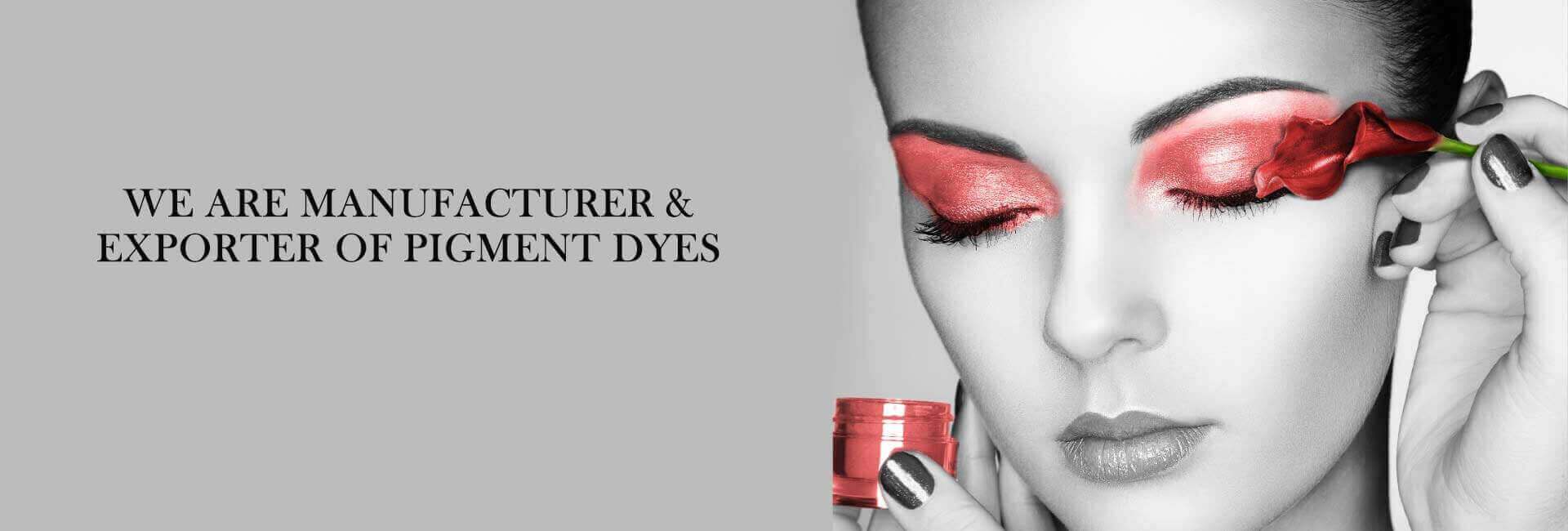 Manufacturer and Exporter of Pigments Dyes in Ahmedabad